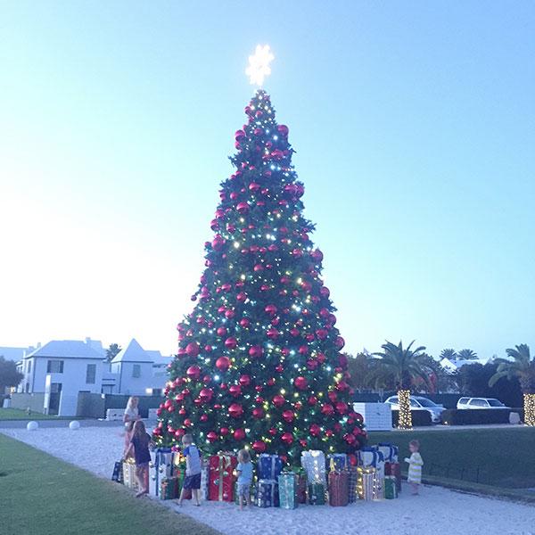 Expat-Brief 1 Christmas Florida