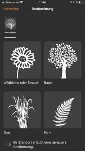 Gute Apps für Kinder – Flora Incognita